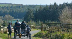 Riding a Carriage, Calvert Trust